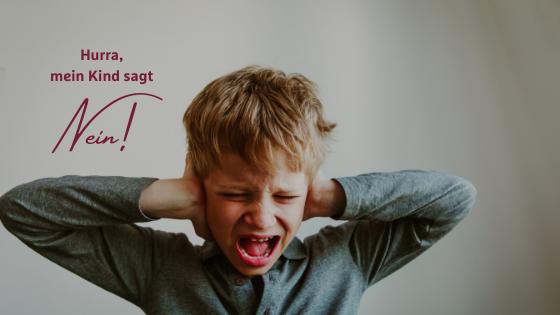 Mein Kind sagt  Nein - Gewaltfreie Kommunikation mit Kindern