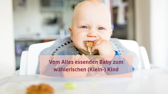 Vom Alles essenden Baby zum wählerischen (Klein-) Kind